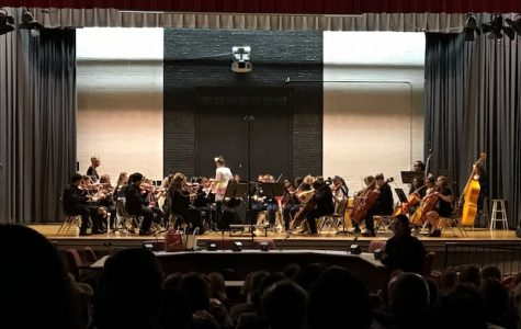 Orchestra Costume Concert