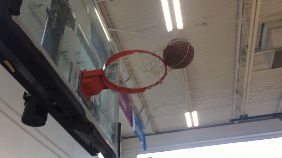 Basketball+net