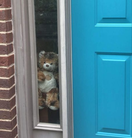 A bear in the window of a Kentucky Home.