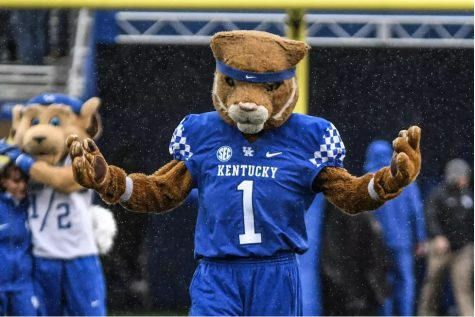 Pictured: Wildcat on Kroger Field.